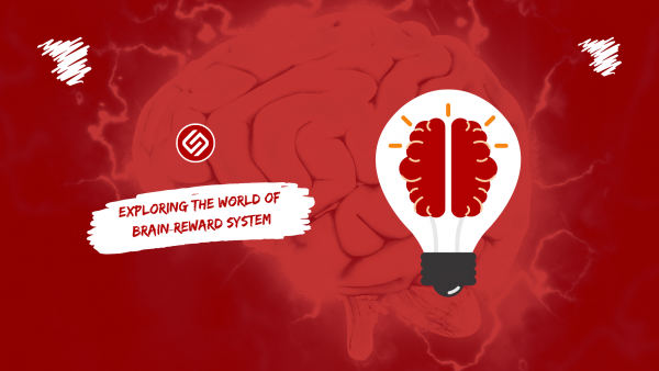 The Brain Reward System: How Does It Work?
