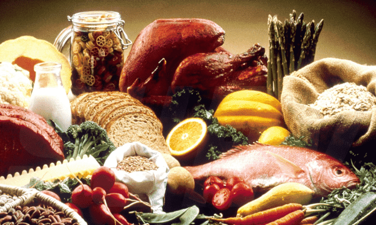 Protein Diet - Permanent Weight Loss Guide